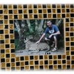 Frame_Cheetah1