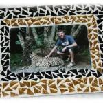 Frame_Cheetah2