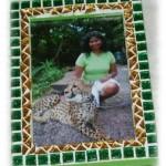 Frame_Cheetah3