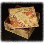 Box_Butterfly